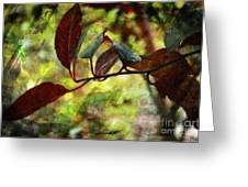 Red Leaves With Texture Greeting Card