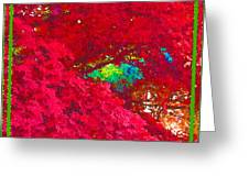 Red Maple 4 Greeting Card