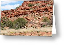 Red Mesa And Yellow Flowers Greeting Card