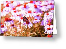 Red Monarch Greeting Card
