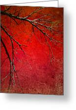 Red Morning Greeting Card