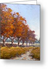 Red Oak Avenue Greeting Card by Yvonne Ankerman