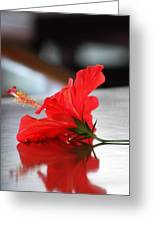 Red On Table Greeting Card