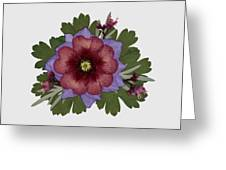 Red Open Faced Potentilla Pressed Flower Arrangement Greeting Card