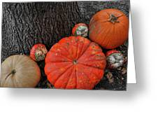 Red Orange Greeting Card