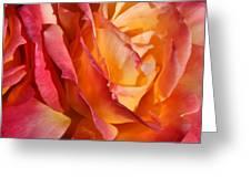 Red Orange Yellow Greeting Card