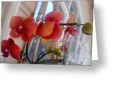 Red Orchid Flowers 01 Greeting Card