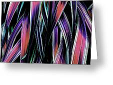 Red Palm Fronds Greeting Card