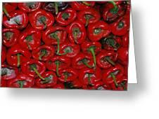Red Paprika Greeting Card