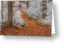 Red Path Greeting Card