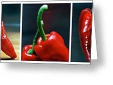 Red Pepper Triptych Greeting Card
