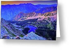 Red Pine Panorama Greeting Card