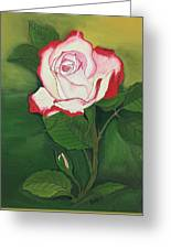 Red-pink Rose Greeting Card