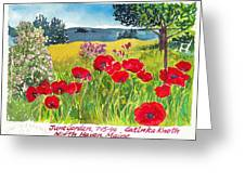 Red Poppies Coastal Maine Island June Garden North Haven  Greeting Card