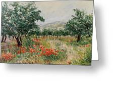 Red Poppies In The Olive Garden Greeting Card