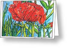 Red Poppy 1 Greeting Card