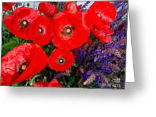 Red Poppy Cluster With Purple Lavender Greeting Card