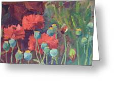 Red Poppy Pods Greeting Card