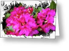 Red Rhododendron Flowers Greeting Card