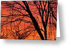 Red Rising Greeting Card