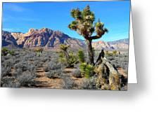 Red Rock Canyon Joshua Tree Greeting Card