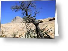 Red Rock Canyon Nv 10 Greeting Card