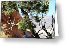 Red Rock Canyon Nv 5 Greeting Card