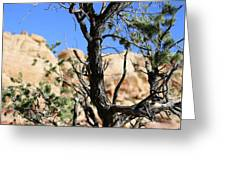 Red Rock Canyon Nv 6 Greeting Card