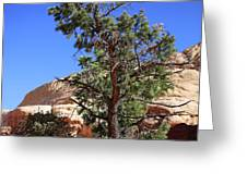 Red Rock Canyon Nv 9 Greeting Card