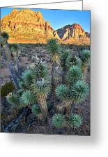 Red Rock Canyon Greeting Card