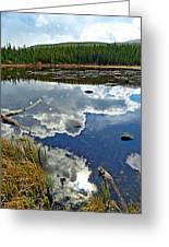 Red Rock Lake Fall Study 2 Greeting Card