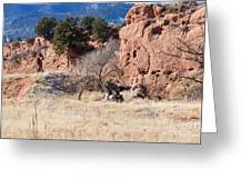 Red Rock Riders Greeting Card