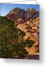 Red Rock Textures Greeting Card