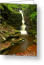 Red Rocks And Lush Green Forest Greeting Card