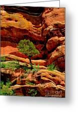 Red Rocks  Colorado Greeting Card