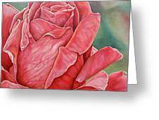 Red Rose 93 Greeting Card