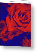 Red, Rose And Blue Greeting Card