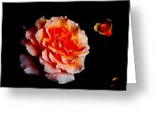 Red Rose And Bud Greeting Card by Gaynor Perkins