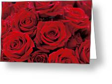 Red Rose Bouquet Greeting Card by Kathy Yates