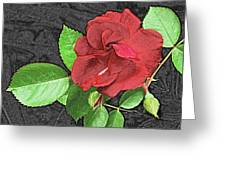 Red Rose For My Lady Greeting Card