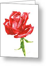 Red Rose Watercolor Painting Greeting Card