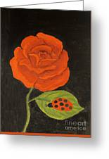 Red Rose, Oil Painting Greeting Card