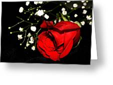 Red Rose With Baby Breath Greeting Card