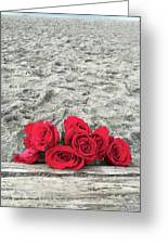 Red Roses Beachside Greeting Card