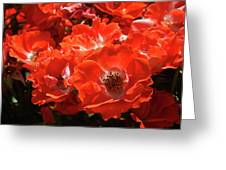 Red Roses Botanical Landscape 1 Red Rose Giclee Prints Baslee Troutman Greeting Card