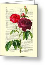 Red Roses For Valentine Greeting Card