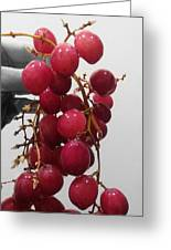 Red Seedless Grape Cluster Greeting Card
