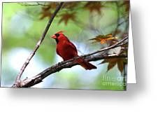 Red Sentry Greeting Card