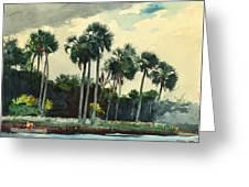 Red Shirt Homosassa Florida Greeting Card