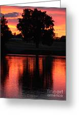 Red Sky Reflection With Tree Greeting Card